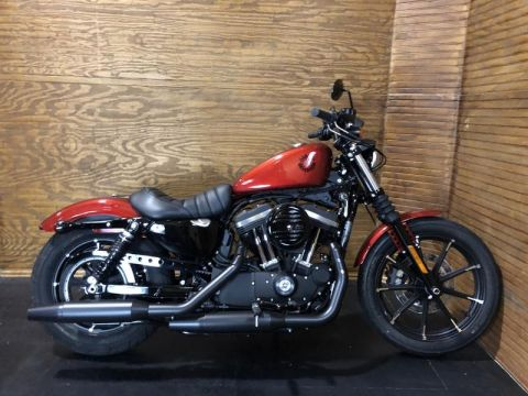 New Harley-Davidson Sportster® For Sale in Bowling Green